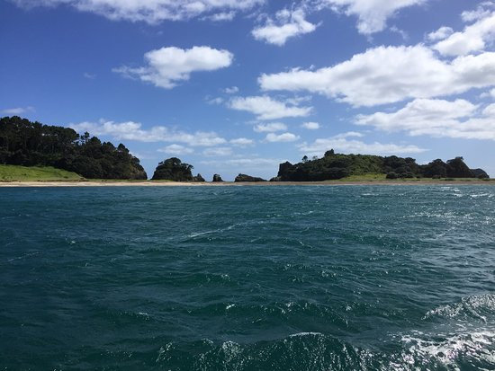 Paihia, New Zealand: Everywhere you look are beautiful sights.