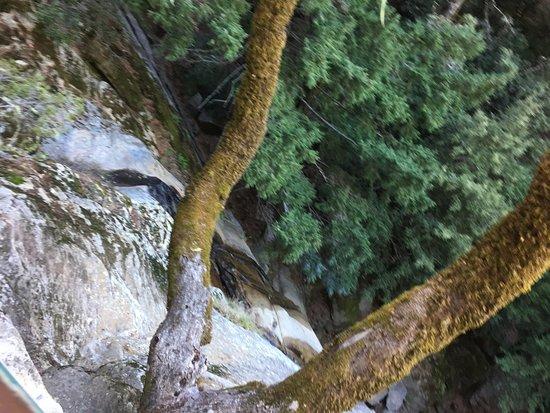 Los Gatos, CA: Rocks on saratoga