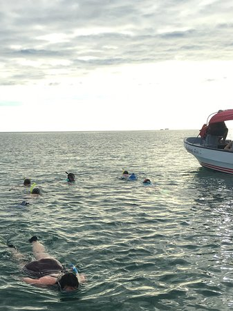 بلاسينسيا, بليز: Snorkeling