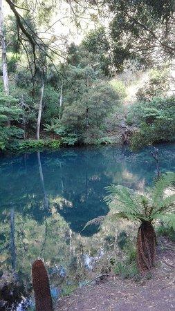 Jenolan Caves, Australia: Nature walk