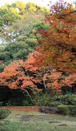 ميغورو, اليابان: 旧前田家本邸 和館 日本庭園