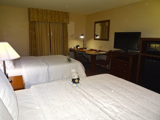 Surprise, AZ: Comfortable beds, the room could have used more lighting