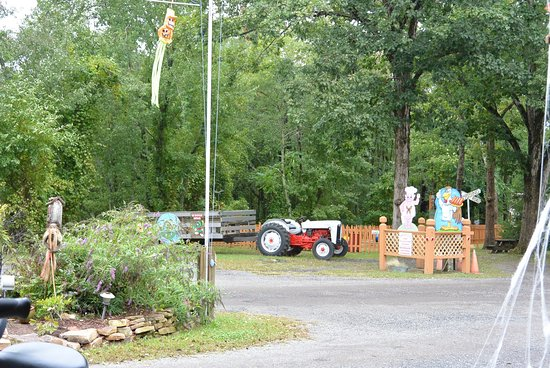 Butterfly Camping Resort: photo1.jpg
