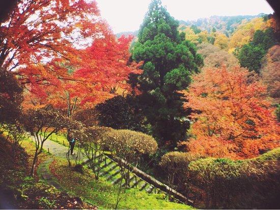 Hakuryuen Garden