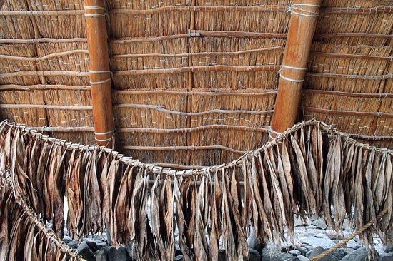Honaunau, Hawái: Fishing nets