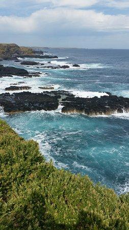 Phillip Island Picture