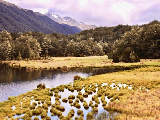 Fiordland National Park, New Zealand: Small lake just before South Lake