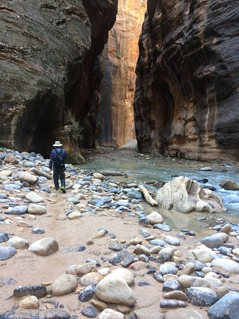 Springdale, UT: Narrows hike