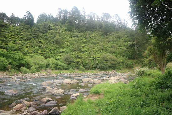 Waihi, Yeni Zelanda: 20161203071451_IMG_0256_large.jpg