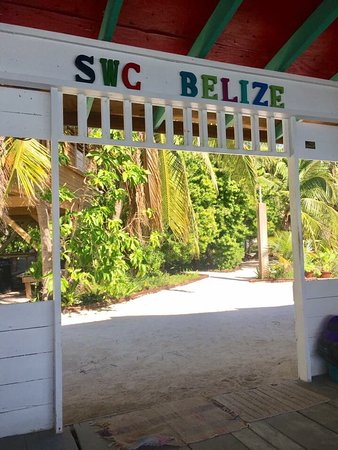 South Water Caye, Belize: Amazing place! We'll be back!