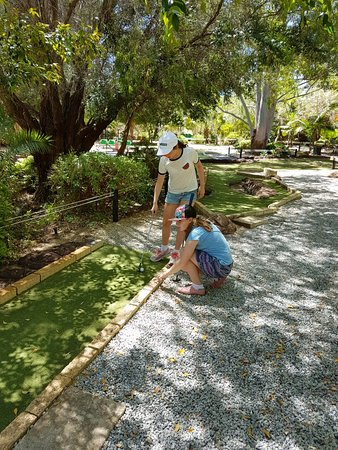 Caladenia Mini Golf: Great day out. Plenty of shade. Lovely grounds.