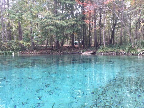 Ginnie Springs: photo3.jpg