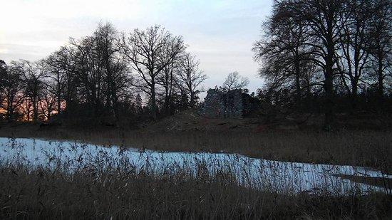 Lagan, Suecia: Liten ö med borgruin