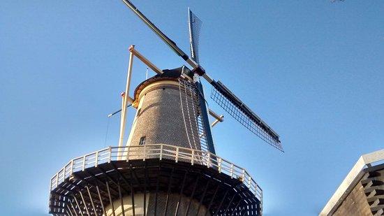 Schiedam, Países Bajos: Un moulin