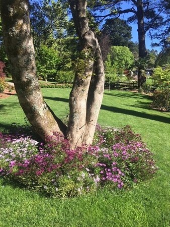 Olinda, Австралия: seven acres of amazing gardens