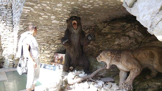 Stronie Śląskie, Polska: Jaskinia Niedźwiedzia
