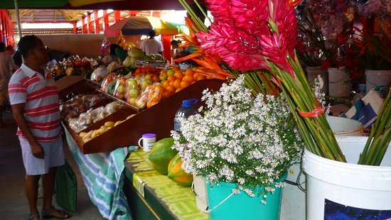 Victoria, Seychellene: Все, что душа пожелает