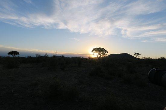 Madikwe Game Reserve, Republika Południowej Afryki: Abendstimmung