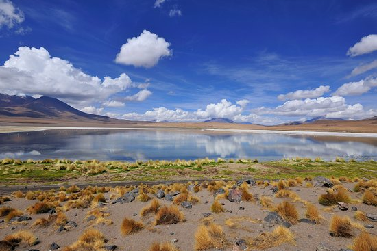 Potosi Department, Bolivia: Март .Laguna Verde