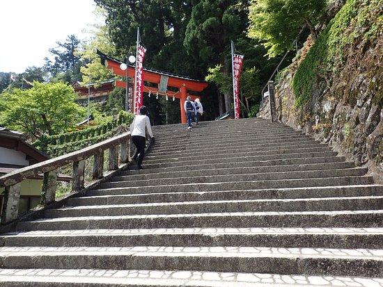 Nachikatsura-cho, Japón: 階段を登り鳥居へ