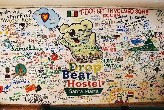 Drop Bear Hostel: photo0.jpg