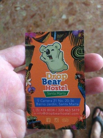 Drop Bear Hostel: photo1.jpg
