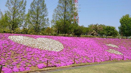 Kai, Japan: DSC_0734_large.jpg