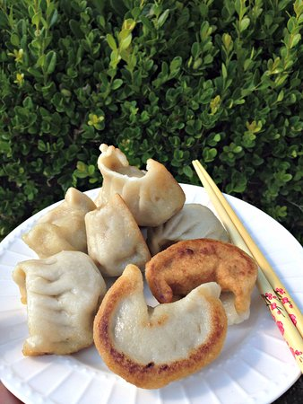 Barberton, OH: Fried Dumplings