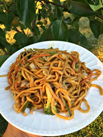 Barberton, OH: Vegetable Lo Mein