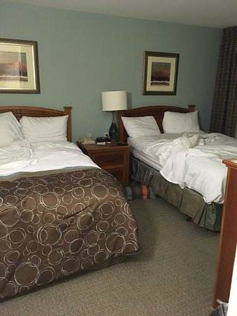 Irving, تكساس: Sorry I didn't think to tasker these quilter it was clean, but here is the two BR suite with a f