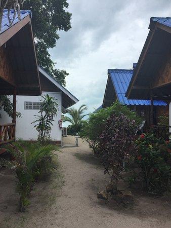 椰樹花園渡假村照片