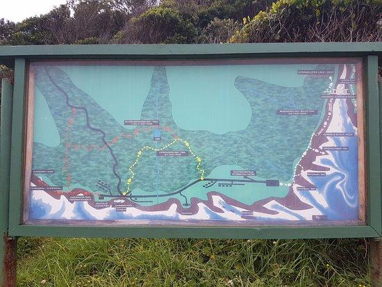 Tsitsikamma National Park, Afrique du Sud : Awesome trails!