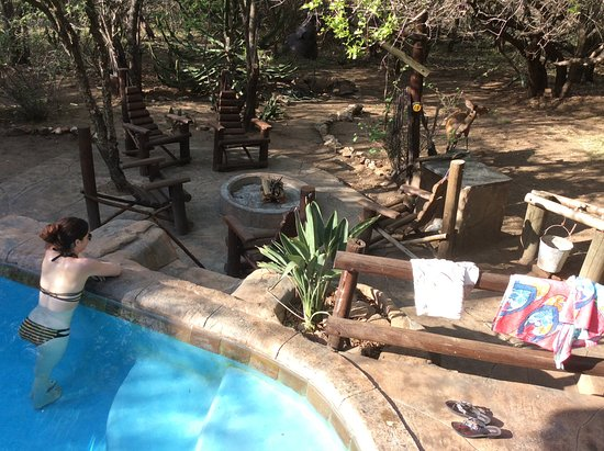 Khaya Umdani Guest Houses: Enjoying the private pool after a day of safari... And the safari continues at home!