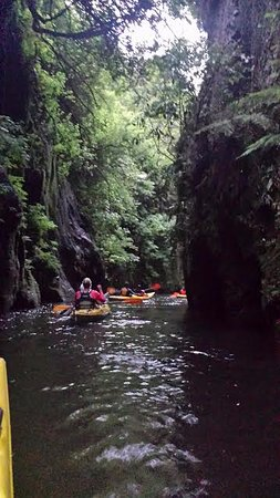 Cambridge, Nueva Zelanda: Feeling like NZ discoverers as we paddled through the gorge