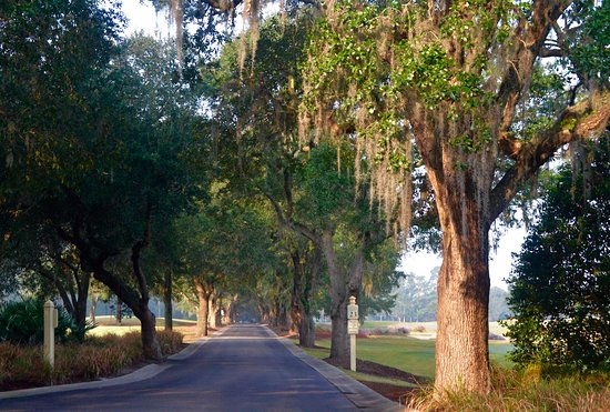 Pawleys Island, Carolina del Sur: Caledonia Golf Club Entranceway