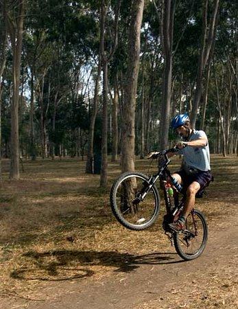 Bosque El Centinela