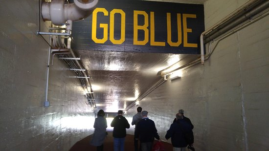 Ann Arbor, MI: Tunnel to the field