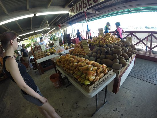 Florida City, FL: A lot of fresh and delicious fruit