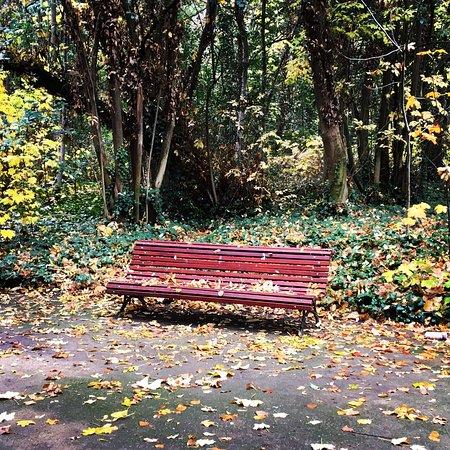 Parque Campo Grande: photo0.jpg