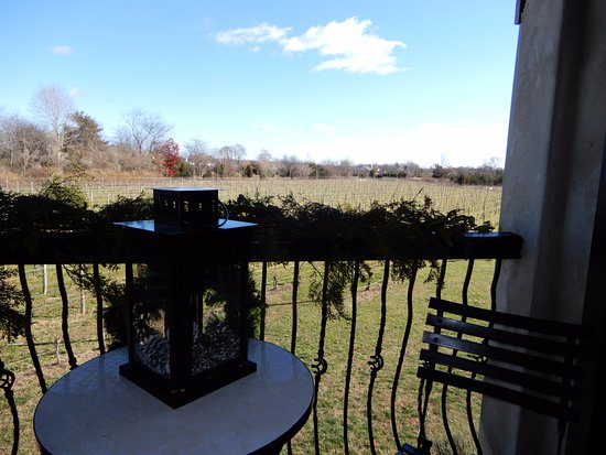Cutchogue, Estado de Nueva York: VIEW OF THE VINEYARDS FROM THE ROOM