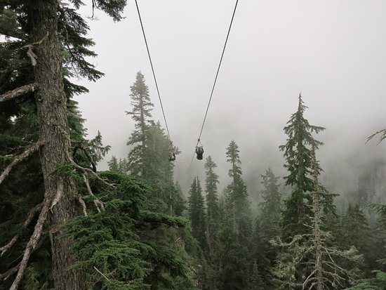 North Vancouver, Kanada: Zip lining on a foggy day - incredible!