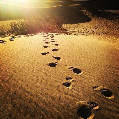 Mesquite Flat Sand Dunes: photo0.jpg