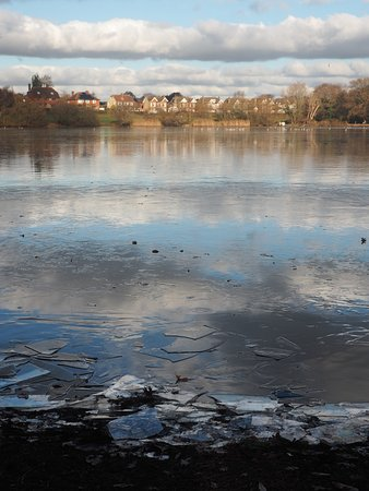 Petersfield, UK : A chilly morning walking round the lake