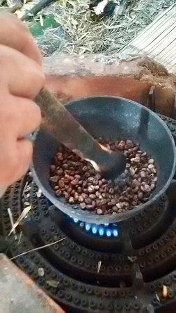 Bosques Del Saman - Alcala: Café