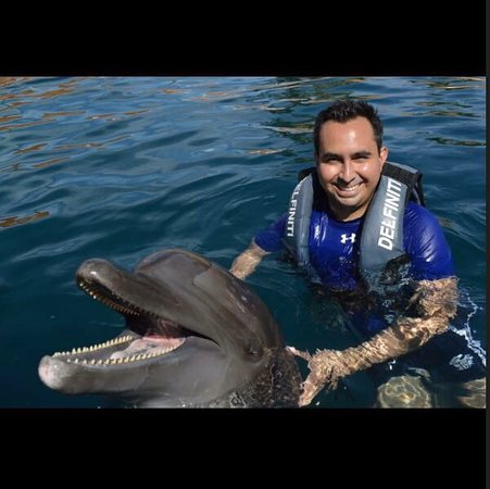 Delfiniti : photo0.jpg