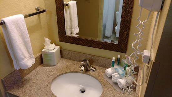 College Park, Gürcistan: Clean sink in bathroom, everything in place.