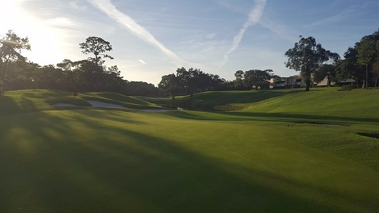 Palm Harbor, FL: 15th hole at Copper Head Golf Course at Innisbrook Golf Resort