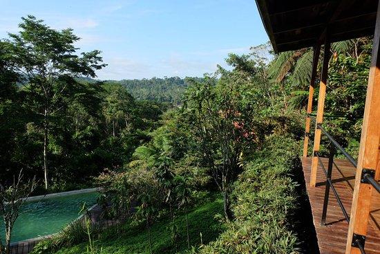 Hamadryade Lodge照片