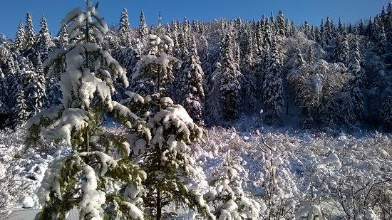 Stoneham-et-Tewkesbury, Canadá: Sentier de l'Éperon, 4 décembre 2016