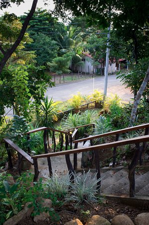Cambutal, Panama/Panamá: Stairs at the front of property. Beach is right across the street!